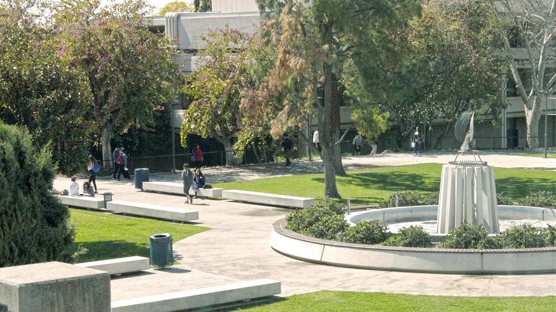 FLS インターナショナル シトラスカレッジ