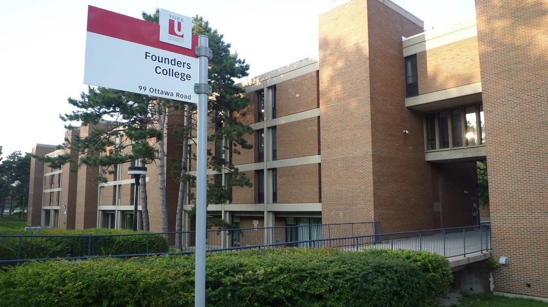 ヨーク大学